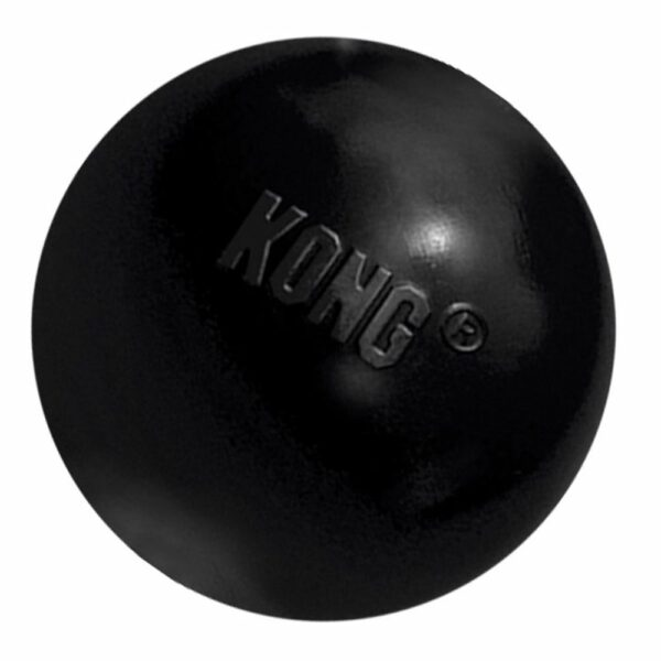 KONG - Extrême Ball Medium/Large