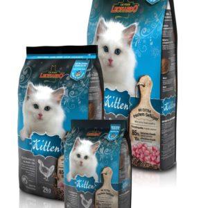 Kitten -croquettes pour chaton - Leonardo